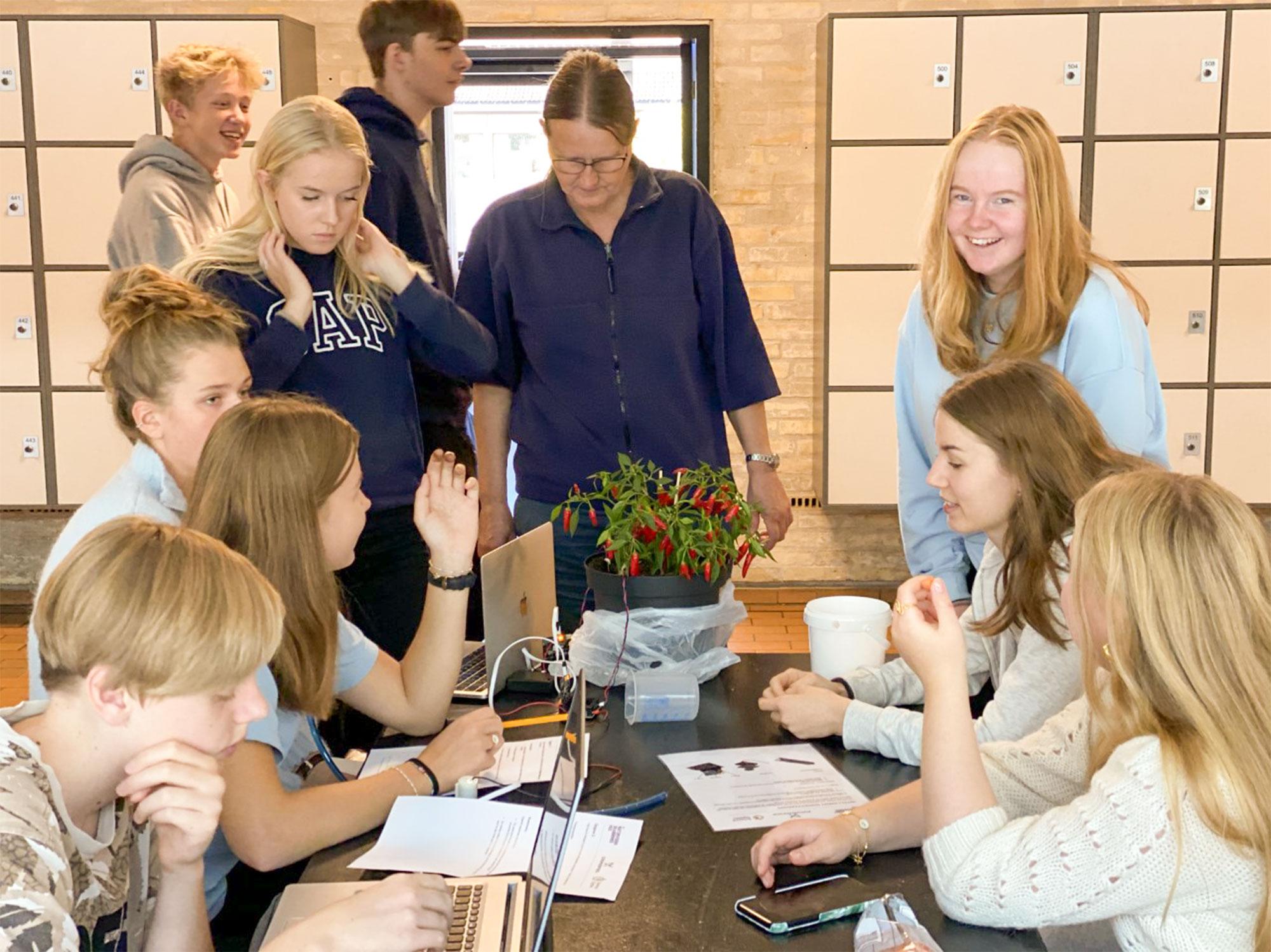 Eleverne arbejder på automatisk vanding af planter. Foto: Martin Kristoffersen.